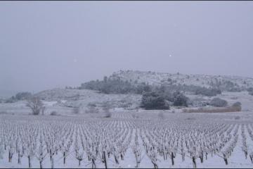 hiver01g