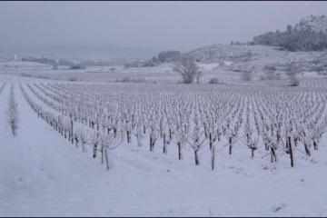 hiver02g