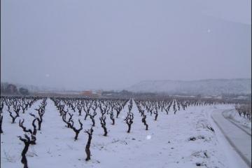 hiver07g