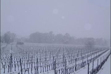 hiver12g